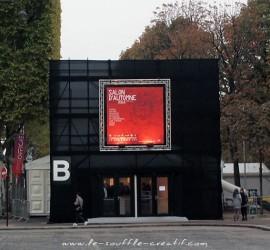 salon-automne-paris-PA161202