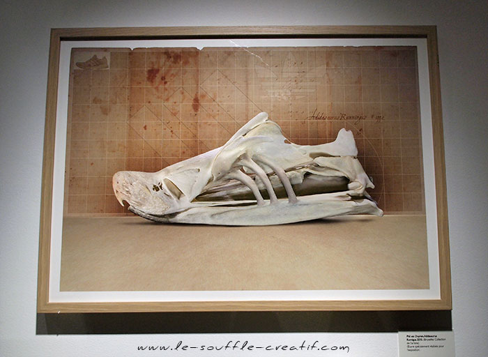exposition-sneakers-2015-PC230665