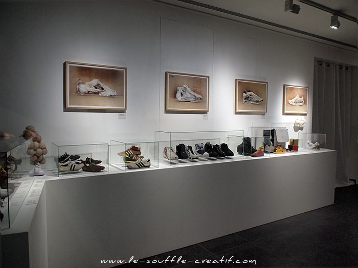 exposition-sneakers-2015-PC230797