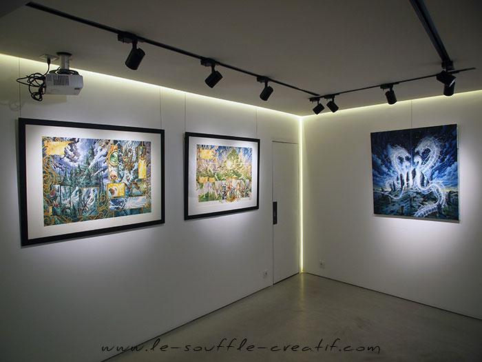 exposition-2016-wika-fees-noires-olivier-ledroit-pb095100